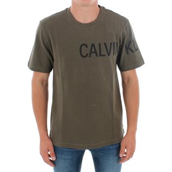 Odjeća Muškarci  Majice kratkih rukava Calvin Klein Jeans J30J313258 LFH GRAPE LEAF Verde