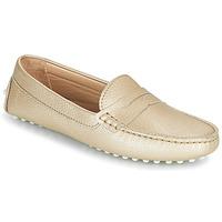 Obuća Žene  Balerinke i Mary Jane cipele JB Martin 1TABATA Gold