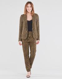 Odjeća Žene  Lagane hlače / Šalvare Ikks BS22085-75 Smeđa