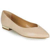 Obuća Žene  Balerinke i Mary Jane cipele JB Martin VERONICA Bijela