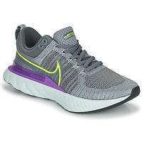 Obuća Muškarci  Running/Trail Nike NIKE REACT INFINITY RUN FLYKNIT 2 Siva