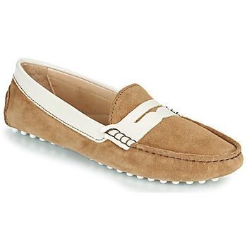 Obuća Djevojčica Balerinke i Mary Jane cipele JB Martin 1TABATA Smeđa