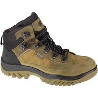 Obuća Muškarci  Pješaćenje i planinarenje 4F OBMH254 Smeđa