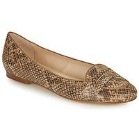 Obuća Žene  Balerinke i Mary Jane cipele Betty London OVINOU Taupe
