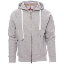 Odjeća Muškarci  Sportske majice Payper Wear Sweatshirt Payper Dallas+ gris