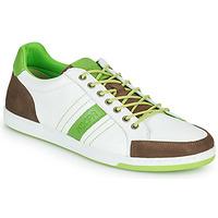 Obuća Muškarci  Niske tenisice Kdopa MARIANO Bijela / Zelena