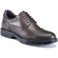Obuća Muškarci  Derby cipele Lumberjack SM67212 002 B01 Smeđa