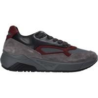 Obuća Muškarci  Niske tenisice IgI&CO 6142522 Siva