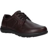 Obuća Muškarci  Derby cipele Enval 6216222 Smeđa