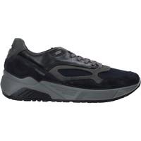 Obuća Muškarci  Niske tenisice IgI&CO 6142511 Plava