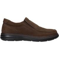 Obuća Muškarci  Slip-on cipele Enval 6209222 Smeđa