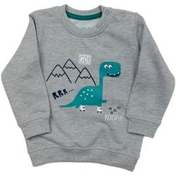 Odjeća Djeca Sportske majice Losan 027-6652AL Siva