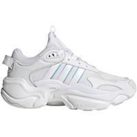 Obuća Žene  Niske tenisice adidas Originals FV1158 Bijela
