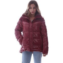 Odjeća Žene  Pernate jakne Invicta 4432435/D Crvena