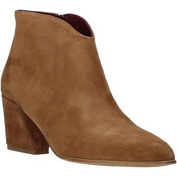 Obuća Žene  Gležnjače Bueno Shoes 20WR5102 Smeđa