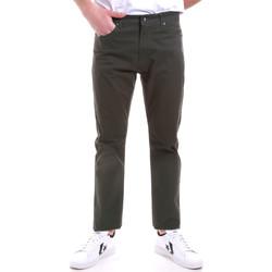 Odjeća Muškarci  Chino hlačei hlače mrkva kroja Navigare NV53090 Zelena
