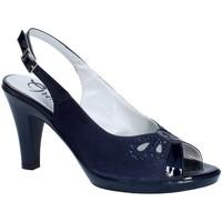 Obuća Žene  Salonke Grace Shoes E8174 Plava