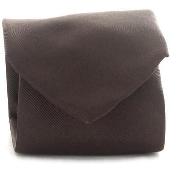 Odjeća Muškarci  Kravate i modni dodaci Michi D'amato CRAVATTA 001 Brown