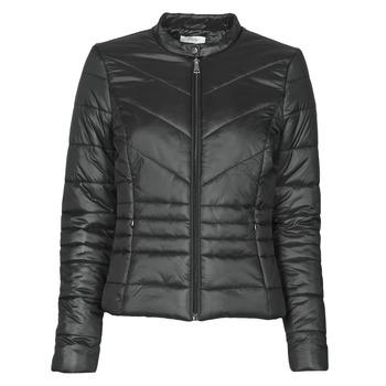 Odjeća Žene  Pernate jakne Betty London OSIS Crna