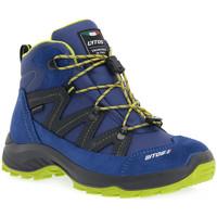 Obuća Žene  Pješaćenje i planinarenje Lytos TROLL JAB 28 Giallo
