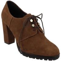 Obuća Žene  Derby cipele & Oksfordice Bruno Premi  Marrón