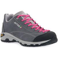 Obuća Žene  Pješaćenje i planinarenje Lytos LE FLORIAN TM82 Grigio