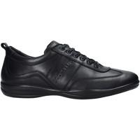 Obuća Muškarci  Modne tenisice Docksteps DSM105001 Crno