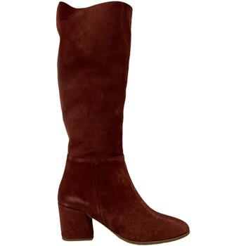 Obuća Žene  Polučizme Bueno Shoes 20WR5104 Smeđa