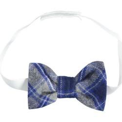 Odjeća Dječak  Kravate i modni dodaci Ido 4K112 Grey/blue