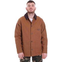 Odjeća Muškarci  Parke Dickies DK720346BD01 Smeđa