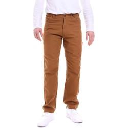 Odjeća Muškarci  Hlače Dickies DK121172BD01 Smeđa