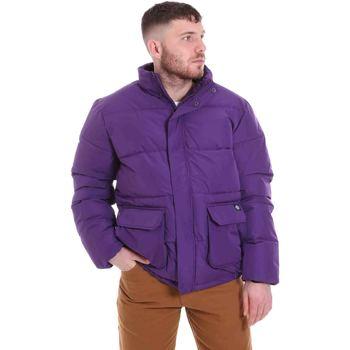 Odjeća Muškarci  Pernate jakne Dickies DK720342DEP1 Ljubičasta