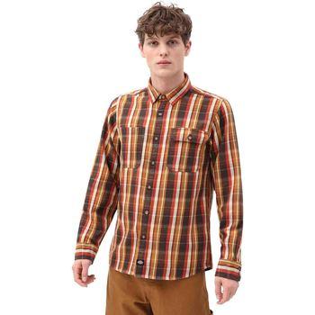 Odjeća Muškarci  Košulje dugih rukava Dickies DK0A4X5LBD01 Smeđa