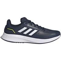 Obuća Muškarci  Running/Trail adidas Originals Runfalcon 20 K
