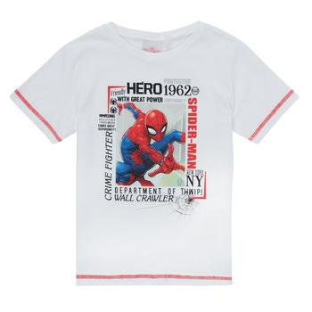 Odjeća Dječak  Majice kratkih rukava TEAM HEROES  SPIDERMAN TEE Bijela