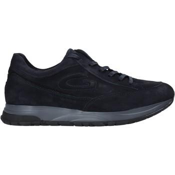 Obuća Muškarci  Niske tenisice Alberto Guardiani AGM004800 Plava