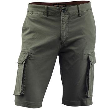 Odjeća Muškarci  Hlače Lumberjack CM80747 005 602 Zelena