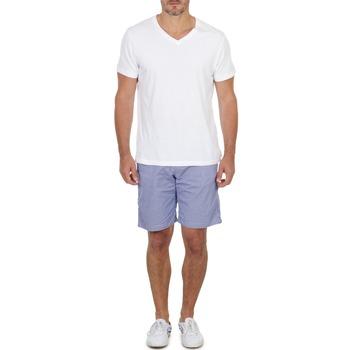 Odjeća Muškarci  Bermude i kratke hlače Franklin & Marshall GAWLER Blue / Béžová