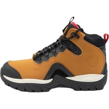 Obuća Muškarci  Polučizme DC Shoes Navigator Leather Lace Winter Smeđa