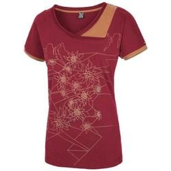 Odjeća Žene  Majice kratkih rukava Salewa 251661651