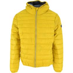 Odjeća Muškarci  Pernate jakne Lotto Bomber Cortina Hd Lg Pad Pl Žuta boja