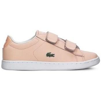 Obuća Djevojčica Niske tenisice Lacoste Carnaby Evo Strap Ružičasta