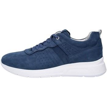 Obuća Muškarci  Niske tenisice NeroGiardini P900920U BLUE