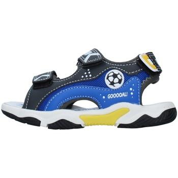 Obuća Dječak  Sportske sandale Primigi 7460700 BLACK