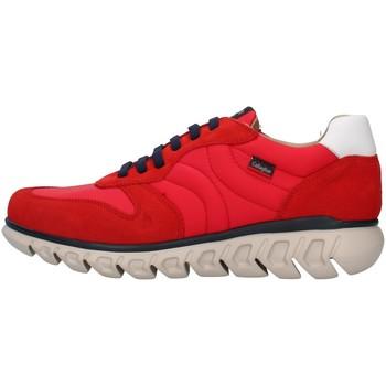 Torbe Muškarci  Niske tenisice CallagHan 12903 RED