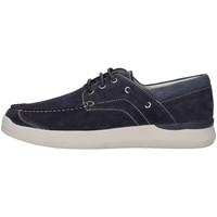 Obuća Žene  Derby cipele Stonefly 211081 BLUE