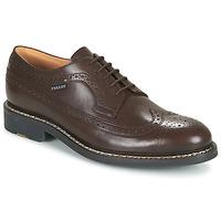 Obuća Muškarci  Derby cipele Pellet NORMAN Smeđa
