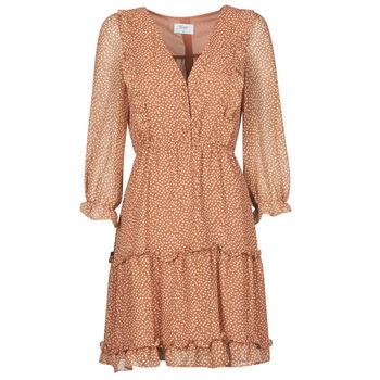 Odjeća Žene  Kratke haljine Betty London OBELLA Boja hrđe