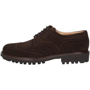 Obuća Muškarci  Derby cipele Triver Flight 214-03B BROWN