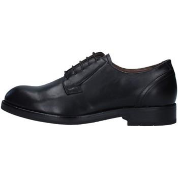 Obuća Muškarci  Derby cipele NeroGiardini A901110U BLACK